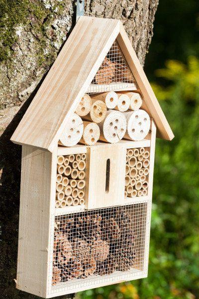 environnement : photo d'un hôtel à insectes