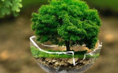 Protection de l'environnement : mieux comprendre pour mieux agir !
