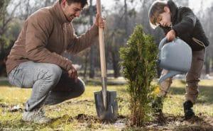 l'écologie expliquée aux enfants : un père en train de planter un arbre avec son fils.