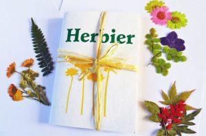Un herbier