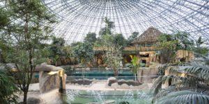 parc animalier : zoo beauval