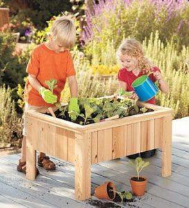 Activités écologiques : potager enfants